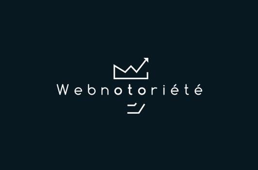 Faites sérieusement le point sur vos campagnes Adwords, votre référencement, votre e-réputation, etc, avec Webnotoriété…
